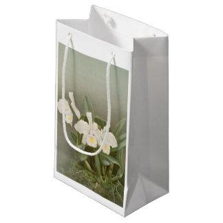 Vintage white Cattleya Trianae gift bag