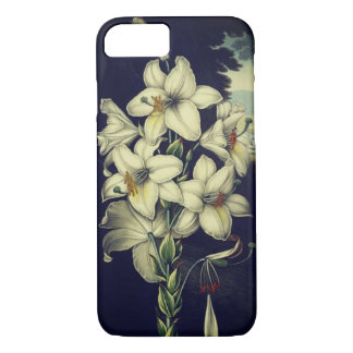 Vintage white lily floral art iphone8 case