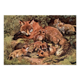 Vintage Wild Animal, Fox Vixen with Cubs by Austen Poster