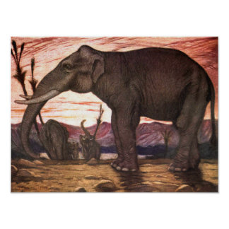 Vintage Wild Animals, Elephant by Louis Sargent Poster