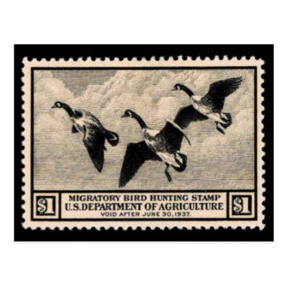 Vintage Wildlife Stamp Graphic Postcard