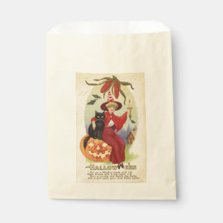 Vintage Witch and Black Cat Halloween Favour Bag