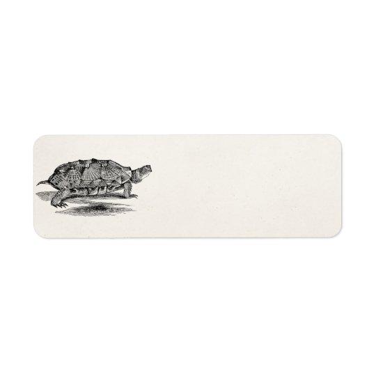 Vintage Wood Terrapin Turtle Template Blank Return Address Label