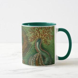Vintage Worms Annelids Chaetopoda by Ernst Haeckel Mug