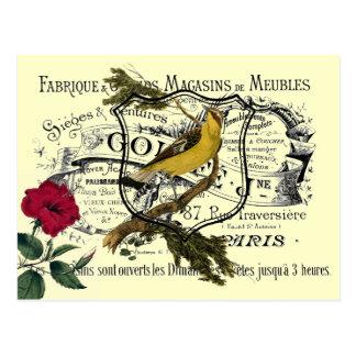 Vintage Yellow Bird Ephemera Collage Postcard