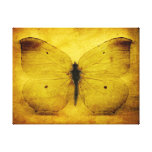 Vintage yellow butterfly canvas prints