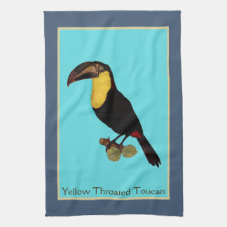 Vintage Yellow Throated Toucan bird towel. Kitchen Towel