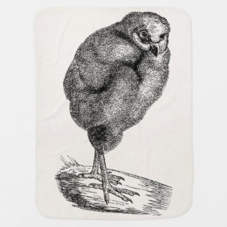 Vintage Young Barn Owl Bird - Baby Birds Template Baby Blanket