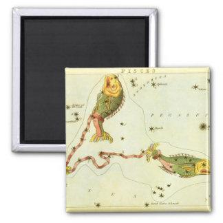 Vintage Zodiac Astrology Pisces Fish Constellation Magnet