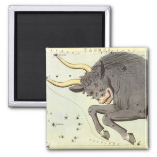 Vintage Zodiac Astrology Taurus Bull Constellation Magnet