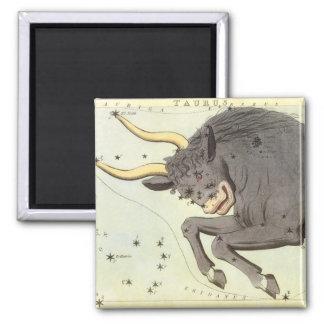 Vintage Zodiac Astrology Taurus Bull Constellation Square Magnet