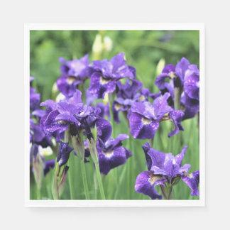 Violet Blue Siberian Iris, Ceasar's Brother Paper Napkin