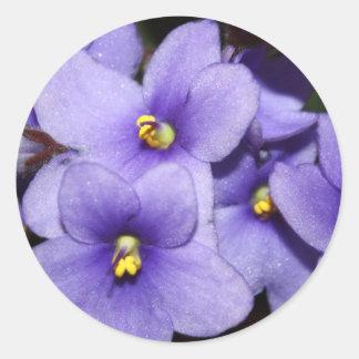 Violet Boquet Classic Round Sticker