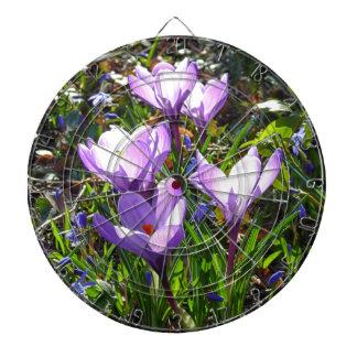 Violet crocuses 02.0, spring greetings dartboard