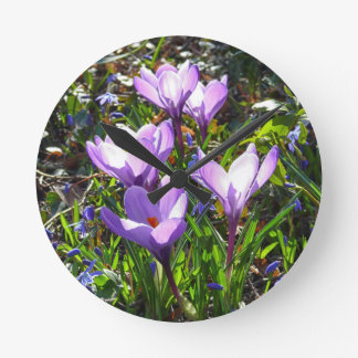 Violet crocuses 02.0, spring greetings round clock