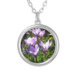 Violet crocuses 02.0, spring greetings silver plated necklace