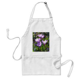 Violet crocuses 02.0, spring greetings standard apron
