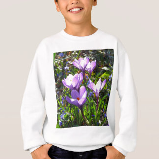 Violet crocuses 02.0, spring greetings sweatshirt