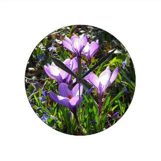 Violet crocuses 02.0, spring greetings wall clock