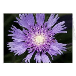 Violet Flower Notecard