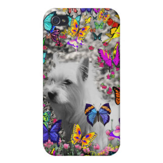 Violet in Butterflies – White Westie Dog Covers For iPhone 4