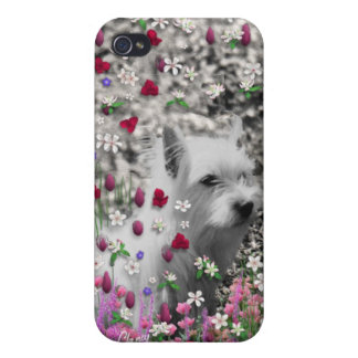 Violet in Flowers – White Westie Dog Case For iPhone 4