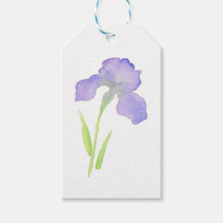 Violet Iris Pack Of Gift Tags