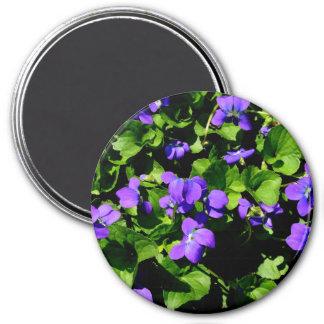 Violet Magnet