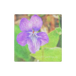 Violet Magnet Stone Magnets