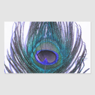 Violet Peacock Feather Sticker