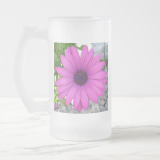 Violet Pink Osteospermum Flower Daisy Frosted Glass Beer Mug