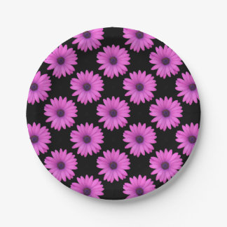 Violet Pink Osteospermum Flower Isolated on Black 7 Inch Paper Plate