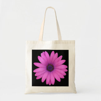 Violet Pink Osteospermum Flower Isolated on Black Tote Bag