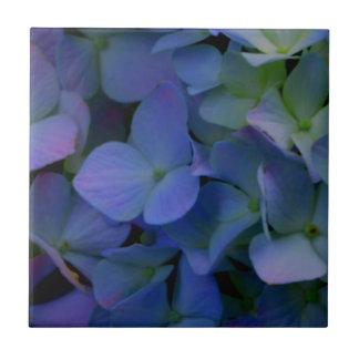 Violet purple hydrangeas tile