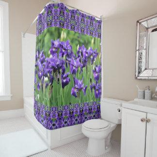Violet Siberian Iris, Ceasar's Brother, geometric