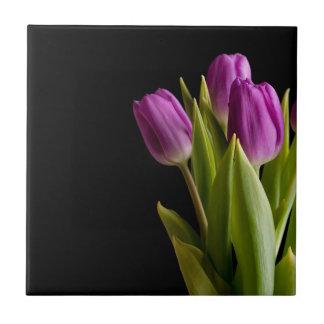Violet tulips tile