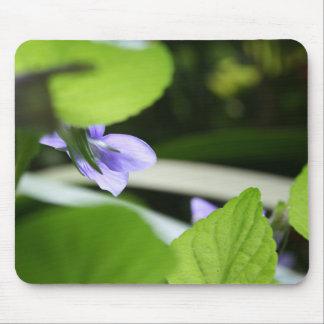 Violette secrète - photographie florale tapis de souris