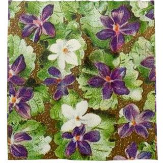 Violettes florales vintages