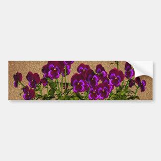 Violettes pourpres sur floral de papier âgé autocollant de voiture