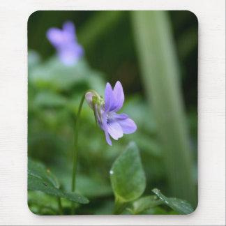 Violettes sauvages - photographie florale tapis de souris