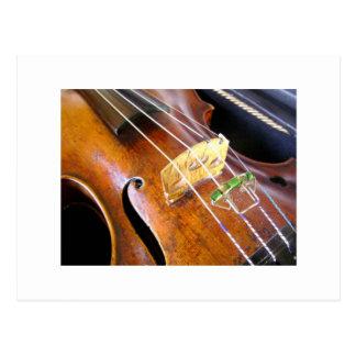 Violin Closeup Postcard