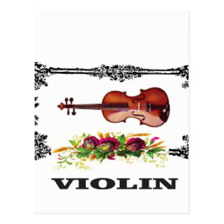 violin in a frame with petals postcard
