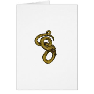 Viper Coiled Ready To Pounce Drawing Card