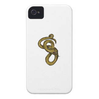 Viper Coiled Ready To Pounce Drawing iPhone 4 Case-Mate Cases