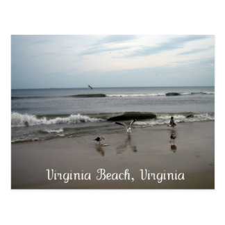 Virginia Beach, Virginia Postcard