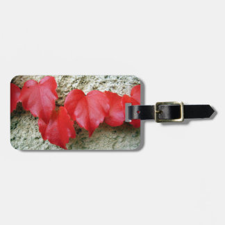 Virginia Creeper Leaves Luggage Tag