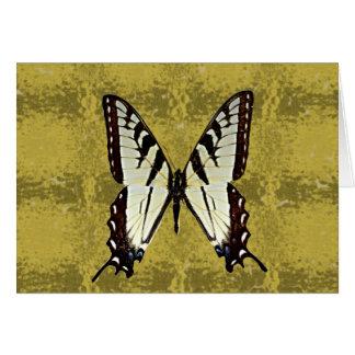 Virginia Eastern Tiger Swallowtail(AL,DE,GA,SC,VA) Card
