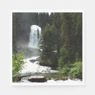 Virginia Falls at Glacier National Park Paper Napkin
