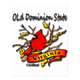 "Virginia ""Old Dominion State"" Cardinal Postcard"
