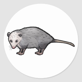 Virginia Opossum Classic Round Sticker